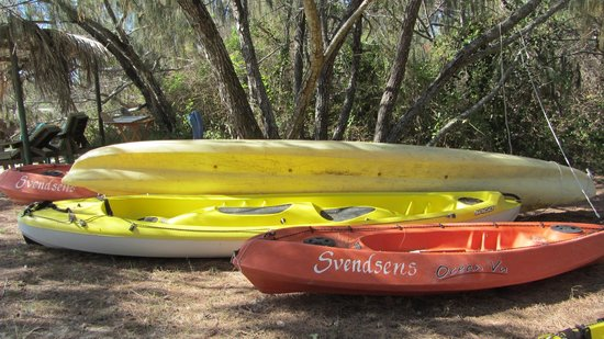 Svendsens Beach: A great range of kayaks to experience the many awesome bays