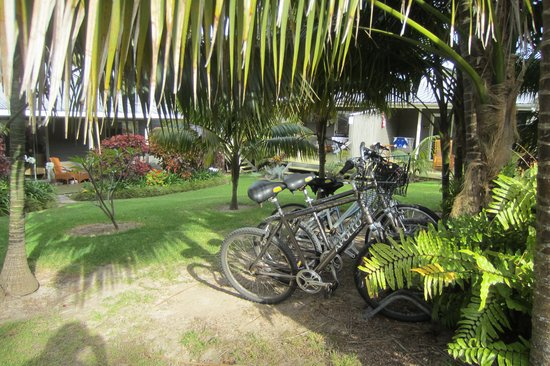 Pandanus Apartments: Garden view of Pandanus