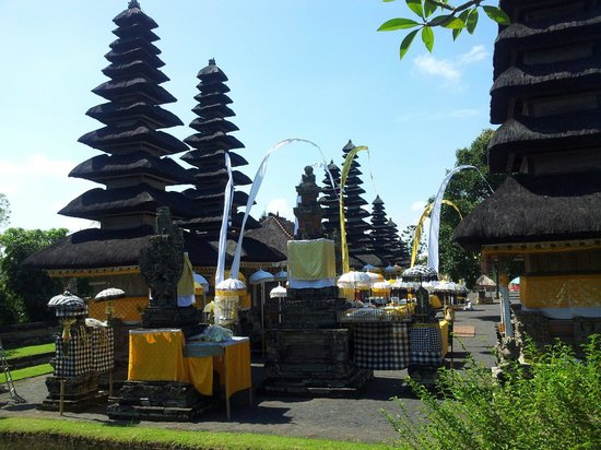 Bali De Yasa Transport - Daily Tours