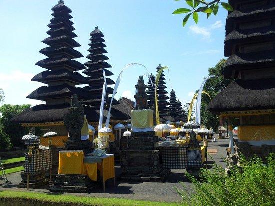 Bali De Yasa Transport - Daily Tours