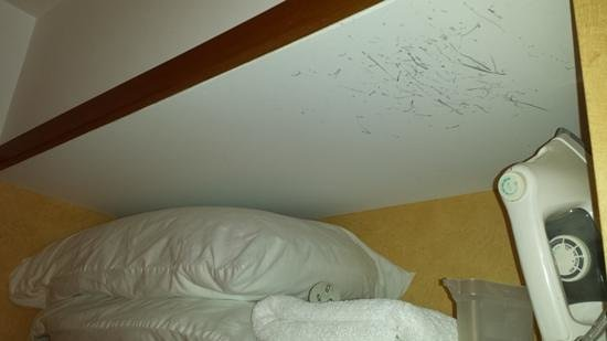 Distinction Whangarei Hotel & Conference Centre: pillows without covers and a damaged roof not fixed.