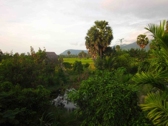 Ganesha Kampot Eco Guesthouse and More: Tribal Hut #3 is behind the trees on the left