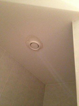 Hanfthal-Hof Hanfwirt : Decke Dusche