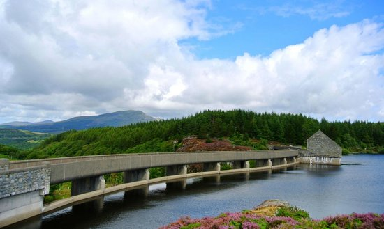 Set within the beauty of Snowdonia National Park, Llyn Trawsfynydd Reservoir is a huge man-made