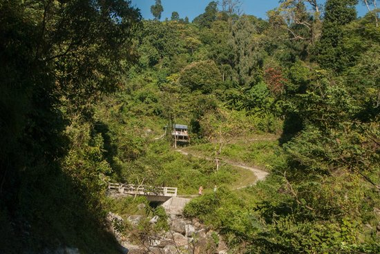 Jalpaiguri, Indien: Trek towards Buxa Fort on hilltop