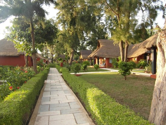 Lookea Royal Baobab: jardins et bungalows