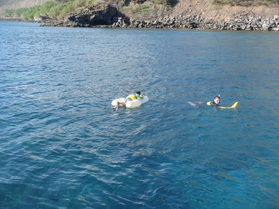 "Four Winds II : Snorkelling while pulling the ""See Board"""