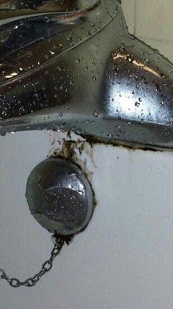 Britannia Wigan Hotel: Mouldy bath