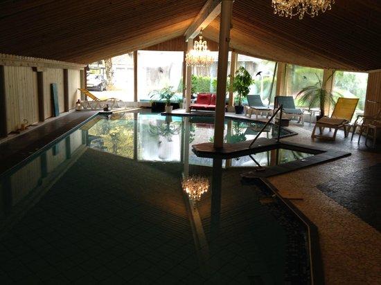 Chalet-Hotel Adler: Coin piscine