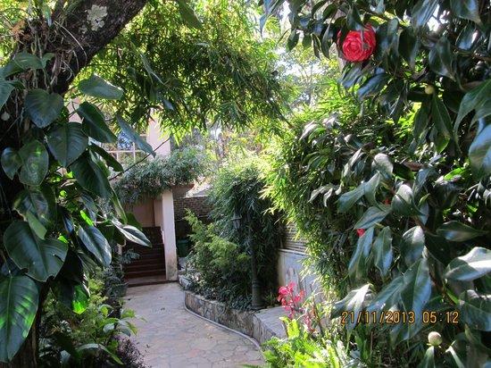 Aerodene Cottage: Aerodene 5