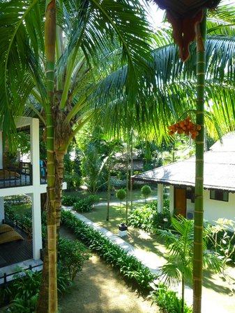 Thande Beach Hotel: Vue de la terrasse sur jardin