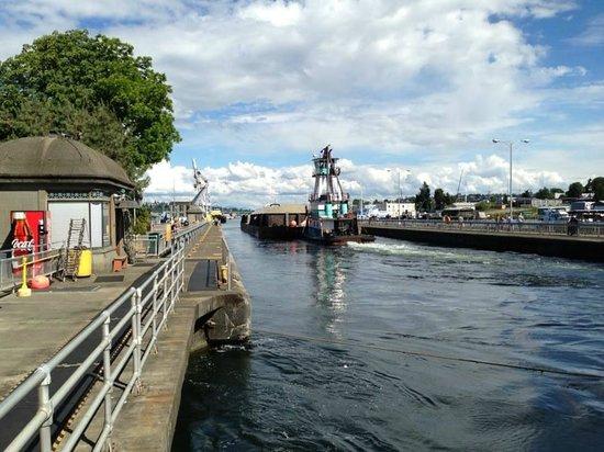 Hiram M. Chittenden Locks : Vista lateral das eclusas.