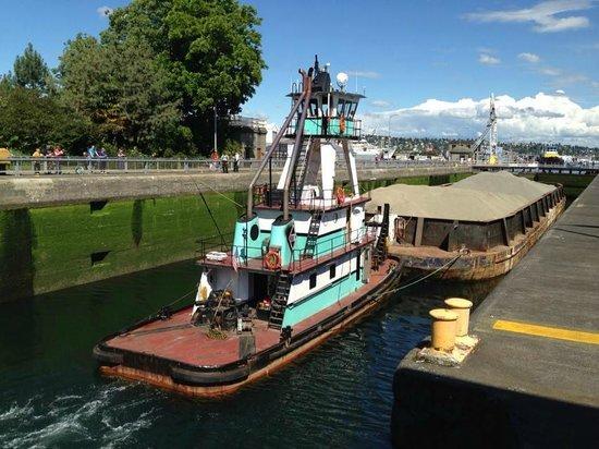 Hiram M. Chittenden Locks : Barco passando pelas eclusas.