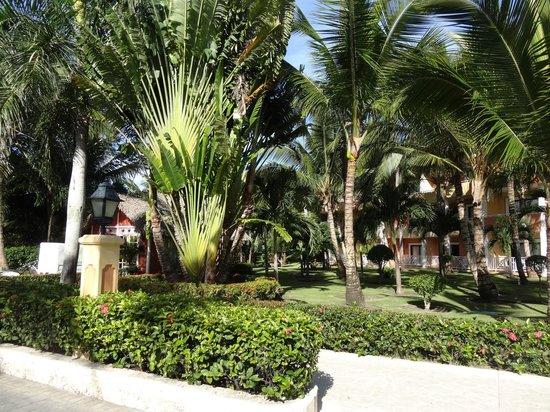 Grand Bahia Principe Bavaro : superbes jardins