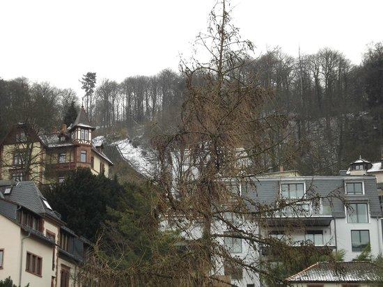 Hotel Am Schloss: VISTA DA JANELA DE UM DOS QUARTOS