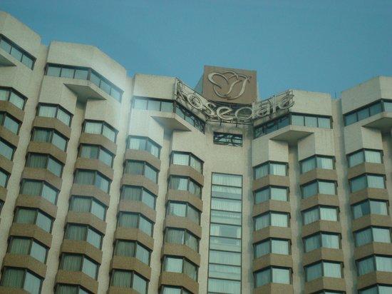Rosedale Hotel & Suites : o Hotel