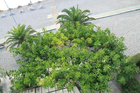 Hotel Embarcadero de Calahonda: Blick von oben auf das Restaurant