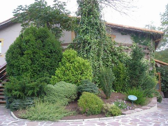 Mugaritz : Jardines de la entrada