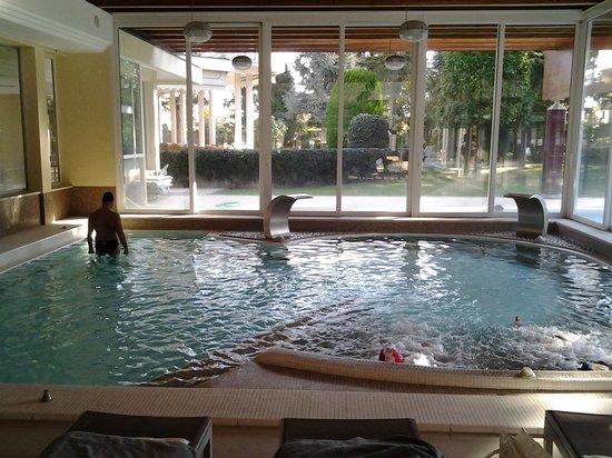 Continental Terme Hotel: Piscina interna con idromassaggio