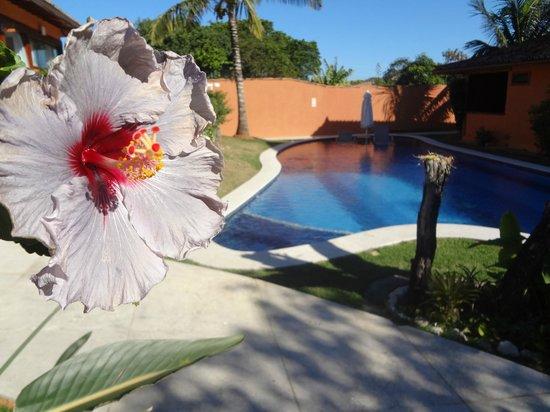 Ferradura Resort: Piscinas menores (Ala 2)