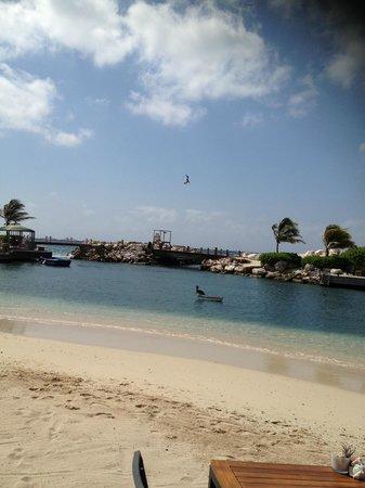 Baoase Luxury Resort: the beach