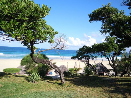 Riake Resort & Villa: vue depuis la fenêtre