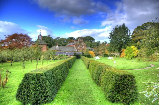 Acorn Bank: view from the walled garden