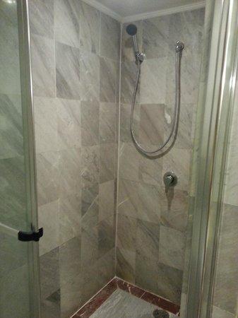 Hotel Windsor Suites & Convention Bangkok: Shower