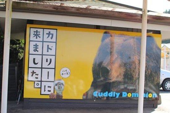 Cuddly Dominion: 撮影スポット