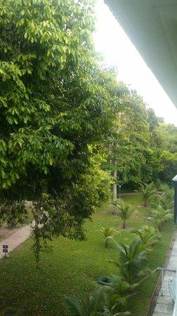 Tropical Manaus Ecoresort: Vista Apto