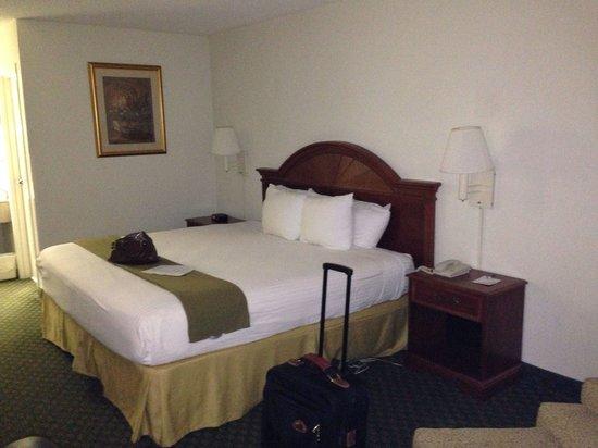 BEST WESTERN Emporia: king bed