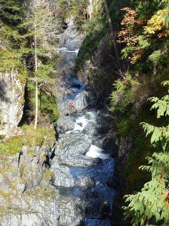 Englishman River Falls Provincial Park : Englishman River Falls III