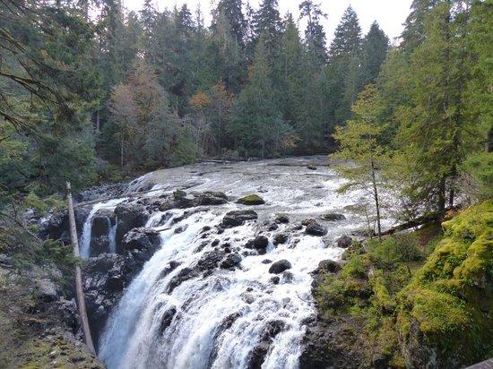 Englishman River Falls Provincial Park : Englishman River Falls IV