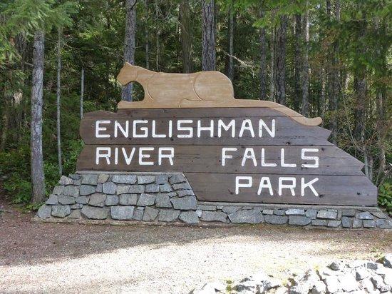 Englishman River Falls Provincial Park: Englishman River Falls VI