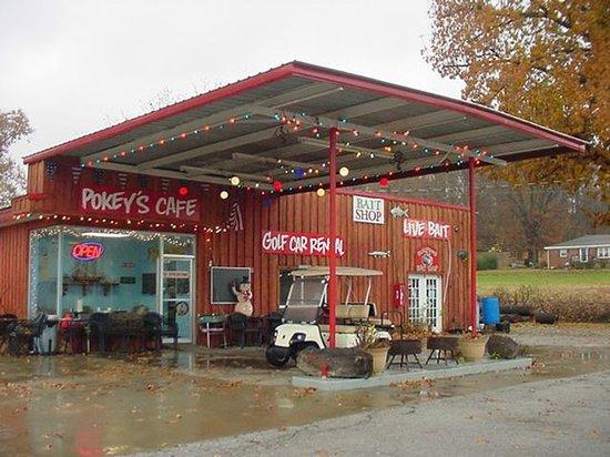 Pokey's Cafe: Christmas Lights For Jesus' Birthday!