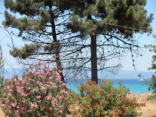 Hanioti Village Resort: widok z ogrodu na plażę