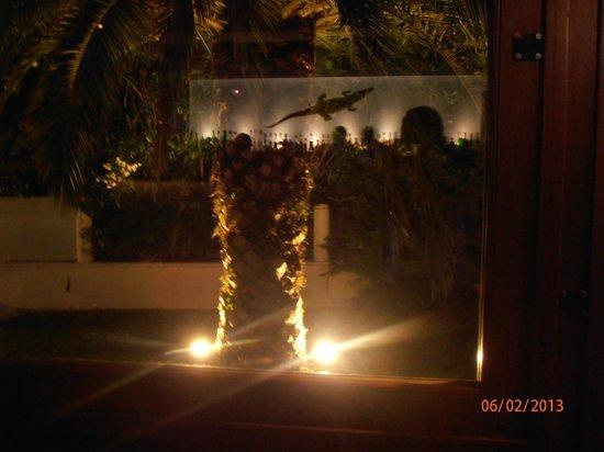 Hanioti Village Resort: widok w nocy baru w szybie