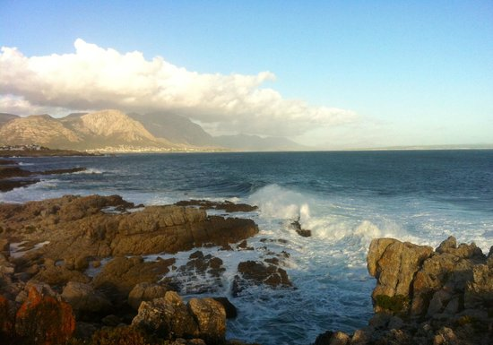 Penguino Guesthouse : view of Hermanus from the cliff path