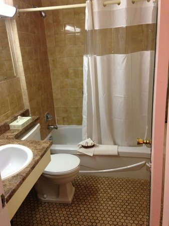 Howard Johnson Cornwall : Bathroom - Nice tile!