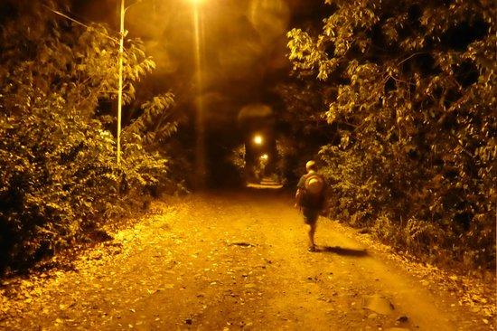 Joab's House: Nächtlicher Spaziergang (völlig ungefährlich) zurück zum Hotel