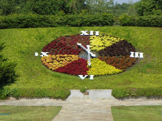 Harry P. Leu Gardens : The Clock