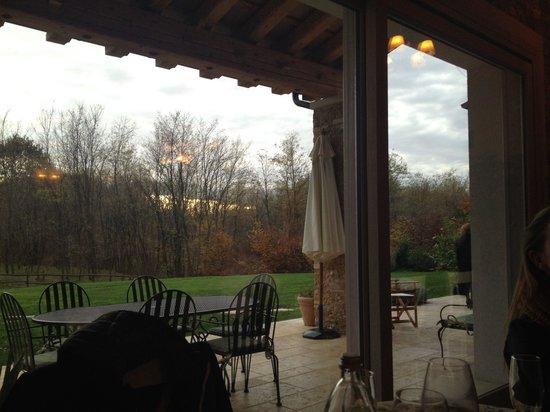 Agriturismo L'Erba Matta: Vista sul bosco dalla sala da pranzo al piano terra e bella terrazza esterna