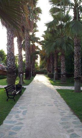 Alba Resort Hotel: Exterior walkway