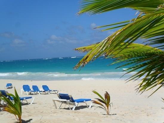 Occidental Caribe: beautiful beach