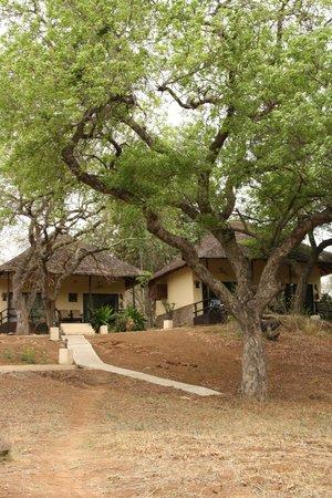 Kurhula Wildlife Lodge: Lodges
