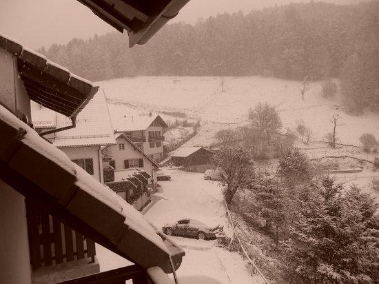 Auberge du Mehrbachel: vue depuis le balcon le