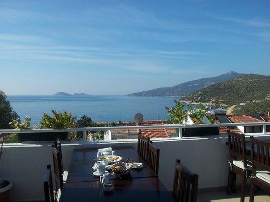 Courtyard : View From Top Floor Terrace - Bar in evening, breakfast in morning