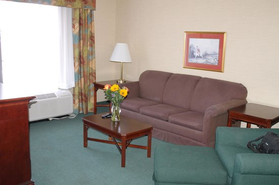 Hampton Inn and Suites Florence-Civic Center: Another view Living Room