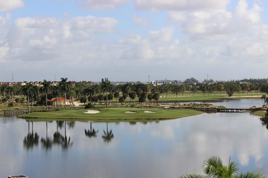 Marriott's Villas at Doral: view from our balcony