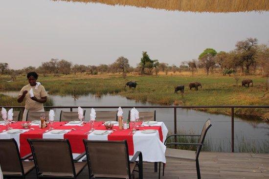 Nkasa Lupala Tented Lodge: Diner